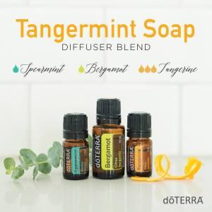 tangermint-soap